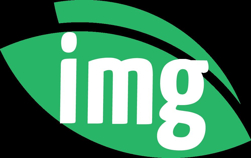 Img.vision icon